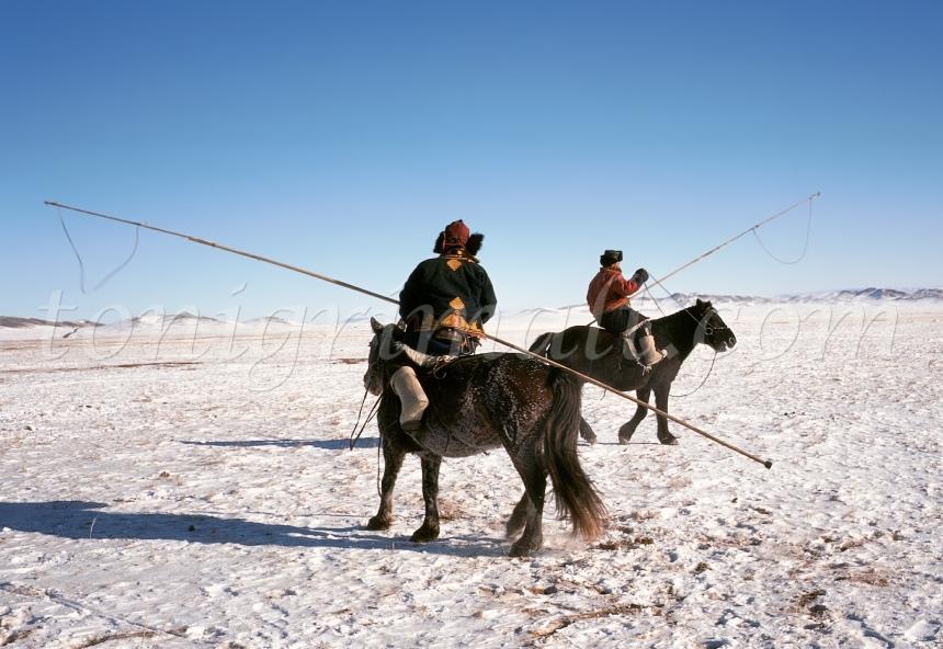 Cuidadores de caballos III